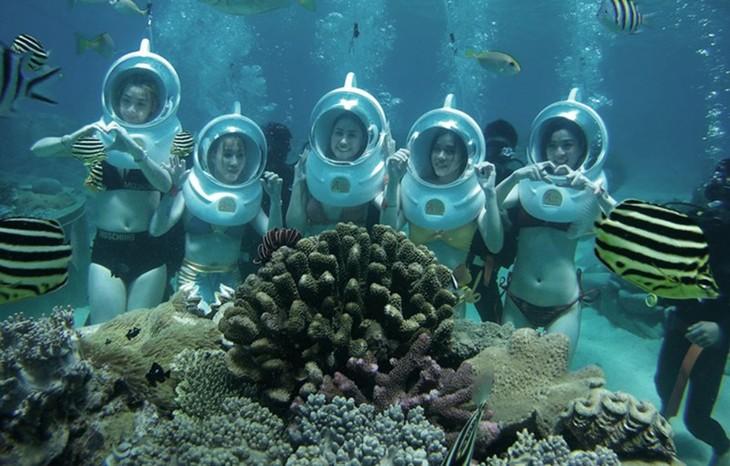Năm du lịch quốc gia góp phần phát triển bền vững du lịch biển - ảnh 3