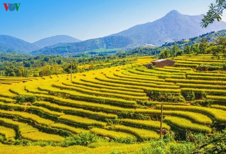 Vùng cao Quảng Ninh thu hút du khách trải nghiệm trong mùa thu - ảnh 1