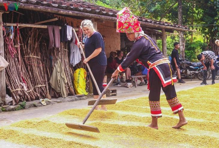 Vùng cao Quảng Ninh thu hút du khách trải nghiệm trong mùa thu - ảnh 5