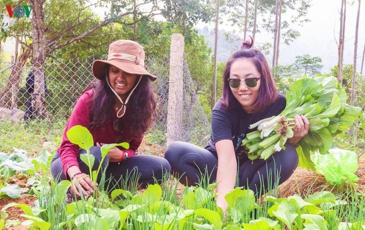 Vùng cao Quảng Ninh thu hút du khách trải nghiệm trong mùa thu - ảnh 7
