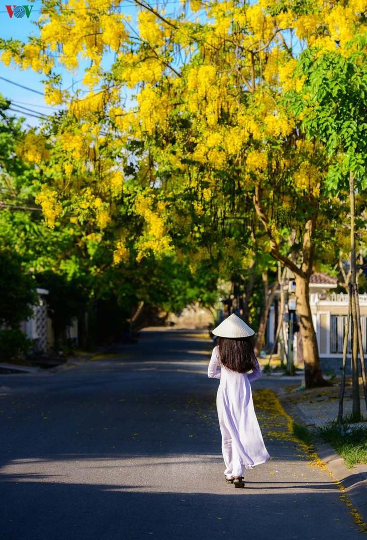 Huế - Thành phố của những sắc hoa mùa hạ - ảnh 5