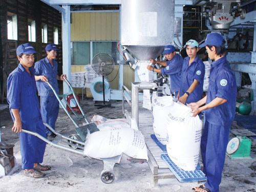 Gobierno vietnamita ayuda a la recuperación y el desarrollo de las empresas - ảnh 3