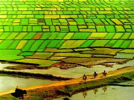 Promulga Vietnam 9 leyes y un decreto recién aprobados por el Parlamento - ảnh 1