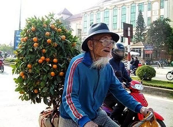 Ambiente del Tet en mercado de flores de Quang An - ảnh 2