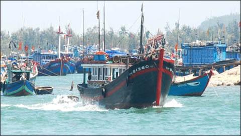 Gobierno vietnamita apoya a los pescadores con créditos preferenciales  - ảnh 1