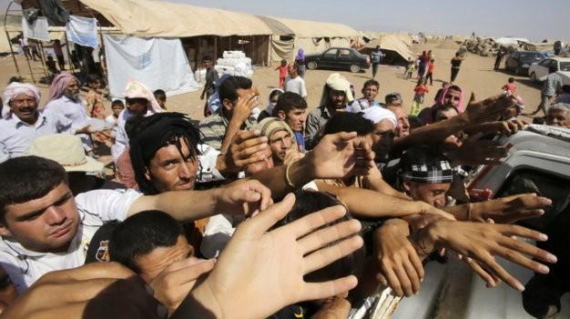 Estados Unidos apoya retoma de posiciones importantes en Iraq  - ảnh 1