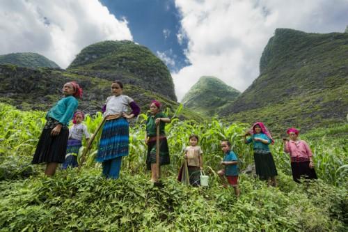 Niños de minorías étnicas a través del lente fotográfico - ảnh 6