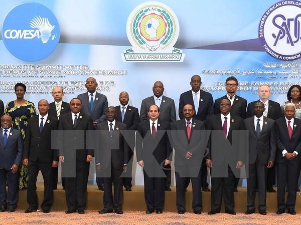 Forman zona de libre comercio en África - ảnh 1