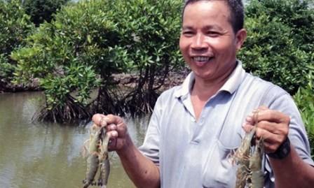 Cultivo de especies acuáticas en el dosel arbóreo revive manglares en Tra Vinh - ảnh 1