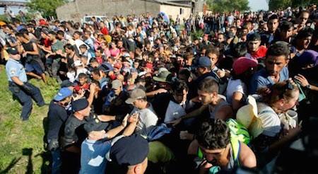 Crisis migratoria en Europa: Croacia cierra 7 puertas fronterizas con Serbia  - ảnh 1