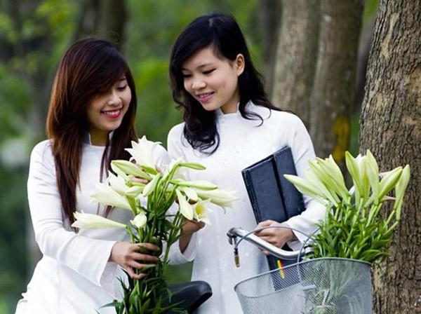 Azucena blanca, la reina de las flores de Hanoi en abril - ảnh 8