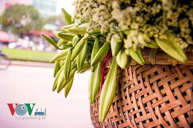 Azucena blanca, la reina de las flores de Hanoi en abril - ảnh 4