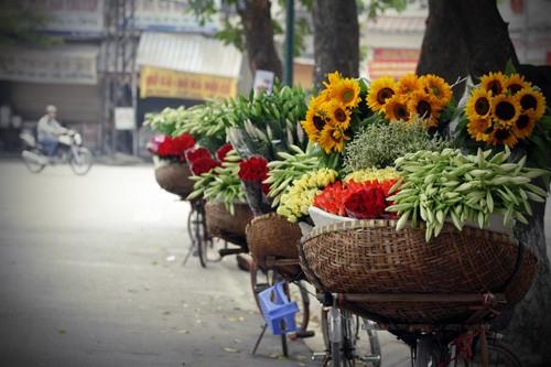 Azucena blanca, la reina de las flores de Hanoi en abril - ảnh 7