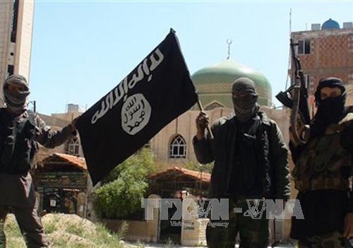 Estado Islámico confirma participación directa de miembros en atentados en París y Bruselas - ảnh 1