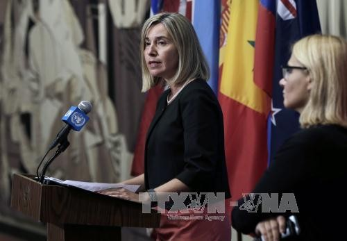 Unión Europea promueve cooperación y diálogo político con Cuba - ảnh 1