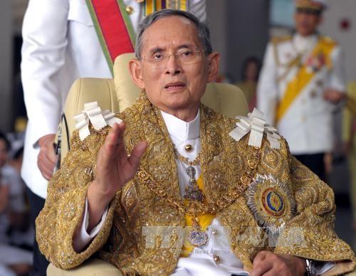 Dirigentes vietnamitas expresan solidaridad con Tailandia por la muerte de su rey  - ảnh 1
