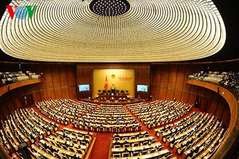 Código Penal e impuestos al uso de tierras agrícolas centran sesión parlamentaria - ảnh 1