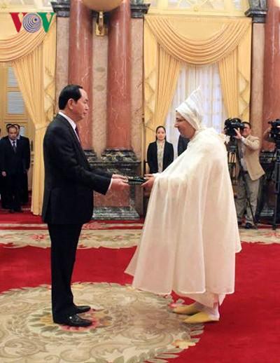 Presidente de Vietnam recibe a nuevos embajadores en Hanoi - ảnh 1