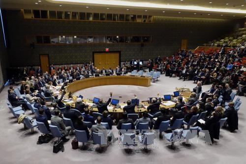 Rusia y China vetan un proyecto de resolución sobre alto el fuego en Alepo - ảnh 1