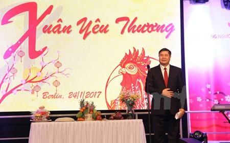 Vietnamitas en Alemania dan la bienvenida a la primavera - ảnh 1