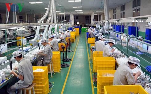 Desarrollo del sector privado, una necesidad urgente de la economía vietnamita - ảnh 1