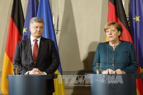 Alemania y Ucrania intercambian posturas sobre la situación en el Donbás - ảnh 1
