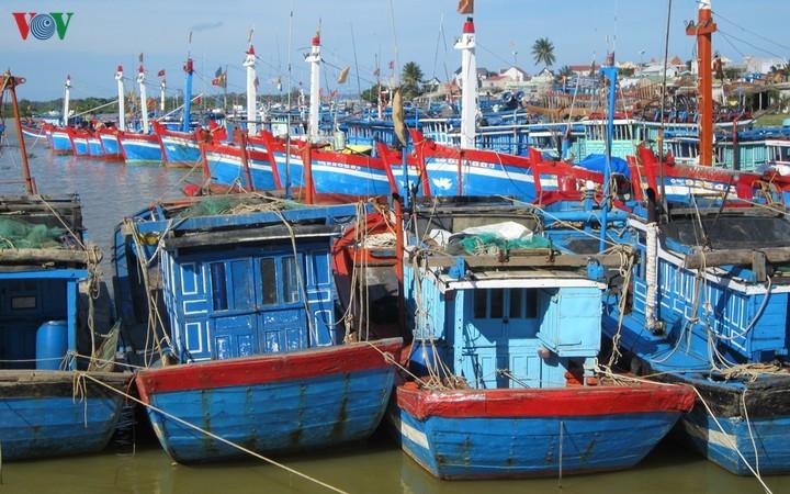Pescadores de Quang Ngai aceleran instalación del control de flotas - ảnh 1