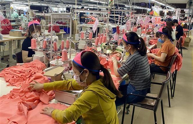 Realizarán durante dos meses censo empresarial en Vietnam - ảnh 1