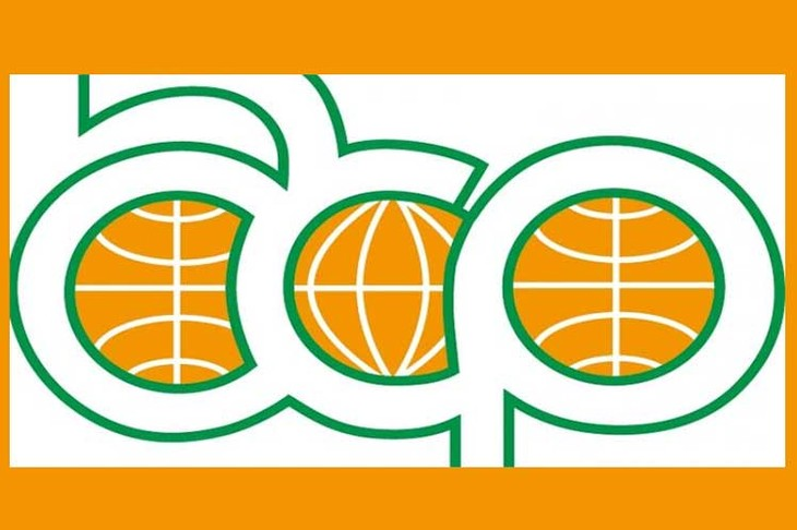 Celebran cumbre virtual de África, Caribe y Pacífico contra la Covid-19 - ảnh 1