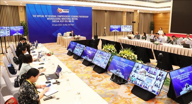 Profesor japonés resalta papel de Vietnam en negociaciones del Acuerdo de Asociación Económica Regional - ảnh 1