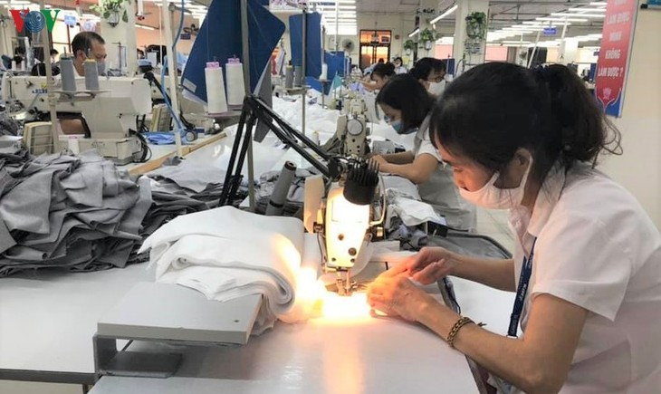 Vietnam por intensificar reformas institucionales para aprovechar las ventajas ofrecidas por el EVFTA - ảnh 1