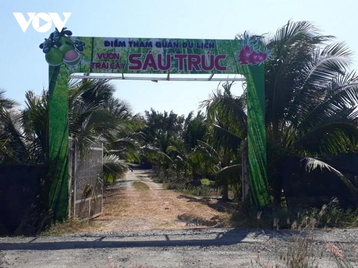 Binh Thuan desarrolla el turismo vinculado con huertos frutales - ảnh 1