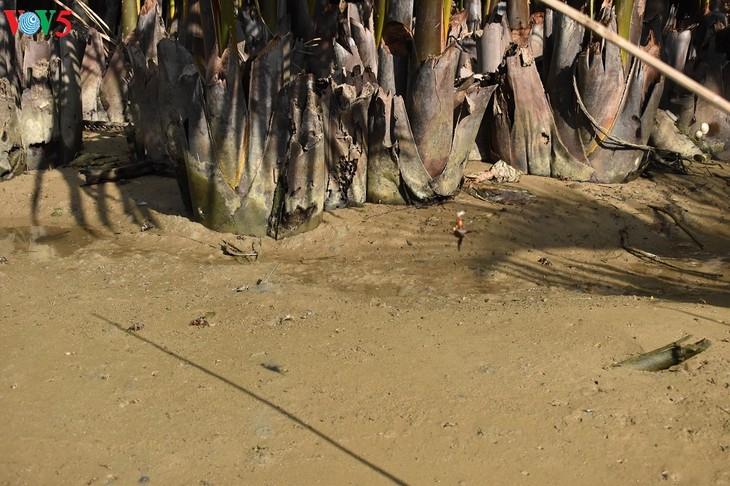 Một Nam Bộ trong lòng phố cổ Hội An - ảnh 16