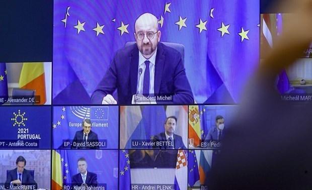 Le sommet de l'UE ajuste sa stratégie globale pour faire face à la pandémie - ảnh 1