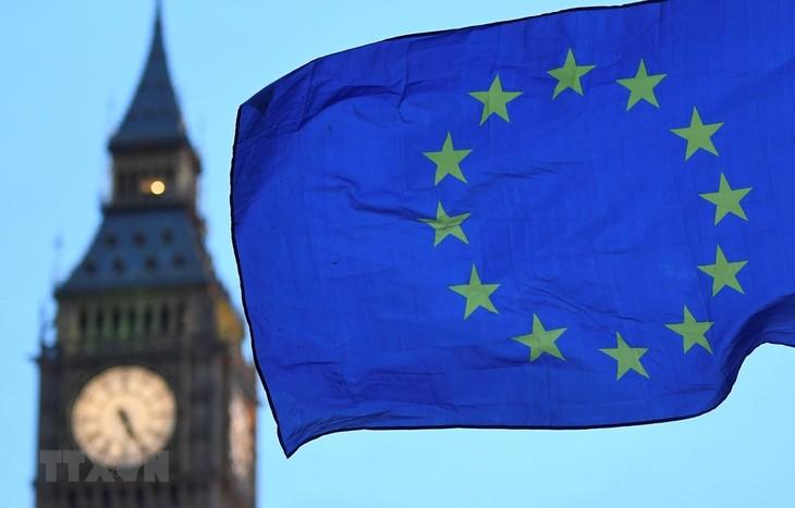Le Parlement européen fait planer le doute sur l'Accord post-Brexit - ảnh 1