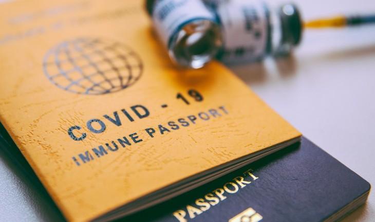 L'Europe avance vers la mise en œuvre du passeport vaccinal cet été - ảnh 1