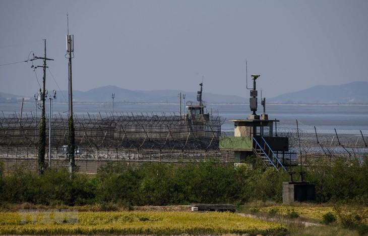 Séoul cherche à durcir la réglementation sur les échanges via Internet avec Pyongyang - ảnh 1