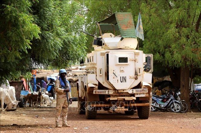 Mali: Trois Casques bleus grièvement blessés dans une attaque - ảnh 1