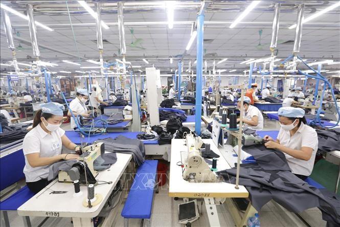 Transformation digitale: où en sont les entreprises vietnamiennes ? - ảnh 2