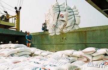 ในปี 2012 การส่งออกของเวียดนามจะเพิ่มขึ้นร้อยละ 13 เมื่อเทียบกับปี 2011  - ảnh 1