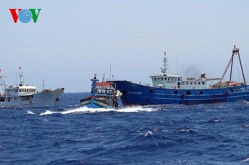 ประชาชนทุกหมู่เหล่าประท้วงการกระทำผิดกฎหมายของจีนในทะเลตะวันออก - ảnh 1