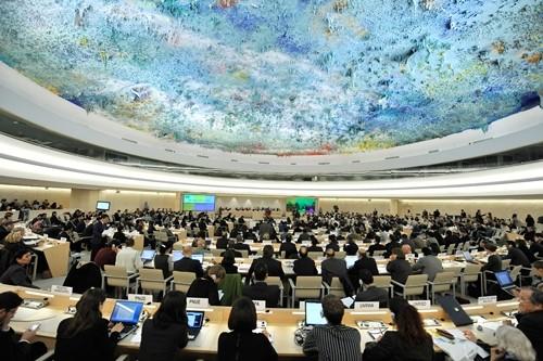 เวียดนามสนับสนุนการสนทนาและความร่วมมือเพื่อยกระดับประสิทธิภาพและบทบาทของสภาสิทธิมนุษยชน - ảnh 1