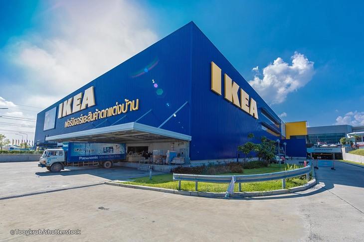 ตัวอย่างการรับผู้สูงอายุเข้าทำงานของห้าง IKEA ประเทศไทย - ảnh 1