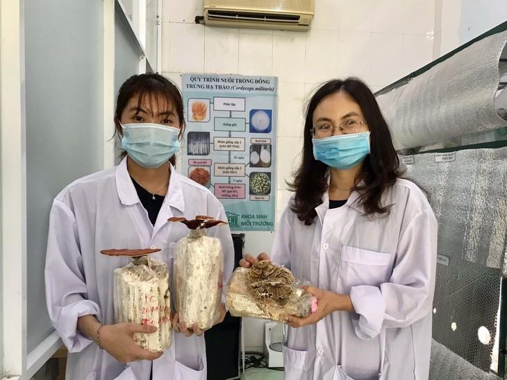 นักศึกษาดานังทำธุรกิจสตาร์ทอัพผ่านการผลิตชาดอกไม้ผสมเห็ดธรรมชาติชนิดซอง - ảnh 2