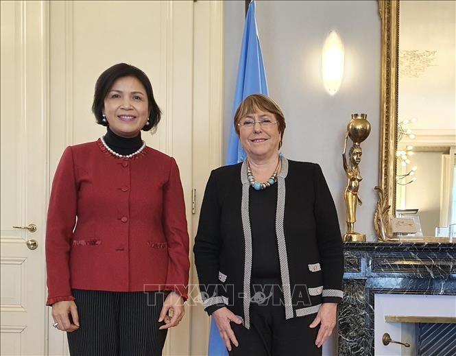 UN High Commissioner lauds Vietnam's human rights achievements - ảnh 1