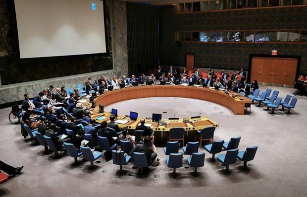 UN Security Council adopts Vietnamese resolution - ảnh 1