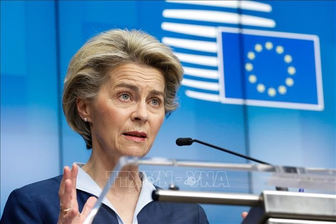 EU plans rollout of travel certificates before summer  - ảnh 1