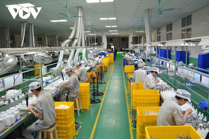 Exports crucial to Vietnam's growth in 2021: expert - ảnh 1