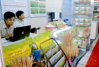 Hội thảo công nghệ xanh và an ninh lương thực EU và ASEAN - ảnh 1