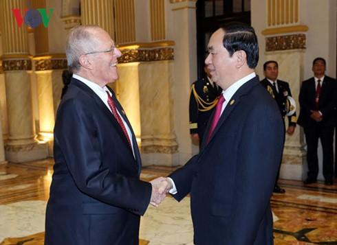 Việt Nam-Peru thúc đẩy hợp tác trên tất cả các lĩnh vực, đặc biệt là về viễn thông và dầu khí  - ảnh 1